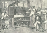 Beer and Fruit Stall on the Wharf at Puerto Cabello, May 12, 1888, 507