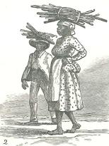 """""""Sugar-cane, a halfpenny a stick!"""", September 15, 1888, 309"""