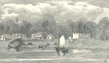 Fort Island, Essequibo, May 12, 1888, 506