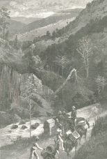 Newcastle, Jamaica, from the Morton D'Orsay Bridle-Path, September 22, 1888, 333