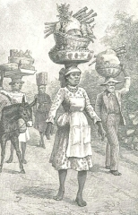 On the Way to the Market, Kingston, Jamaica, August 4, 1888, 140